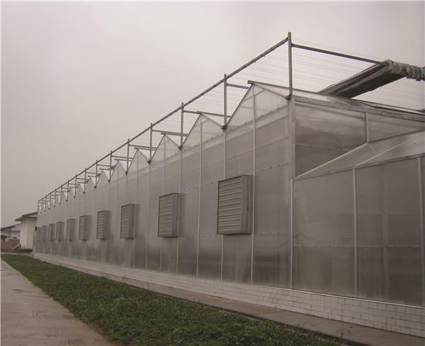 陕西省果树苗木繁育中心杨凌种苗基地