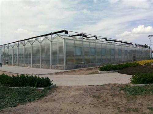 2016年建成的甘肃省正宁县农牧局宝源绿洲高效农业示范园