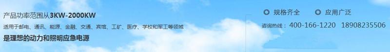 四川汽油发电机组