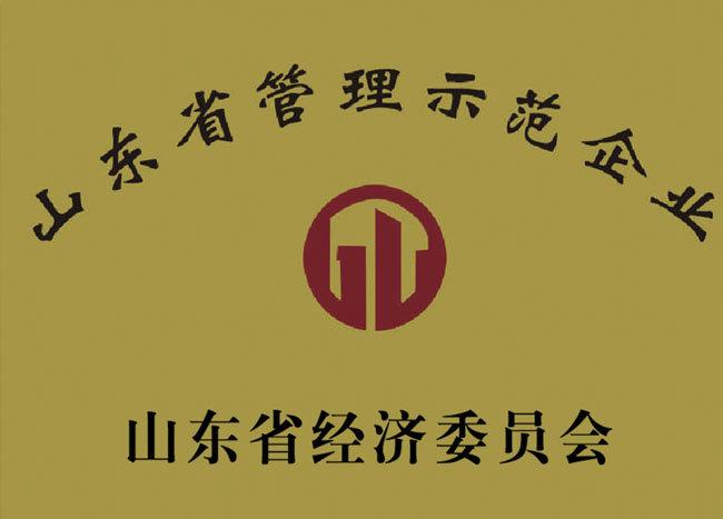山东省管理示范企业