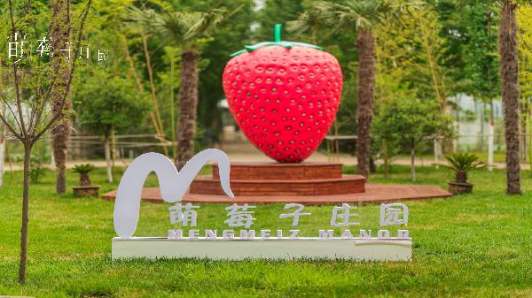 萌莓子庄园