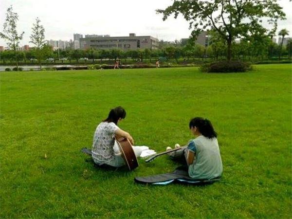 公园绿化使用到我们的百慕大草坪!
