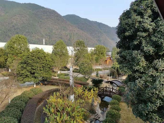 办公楼园区风景