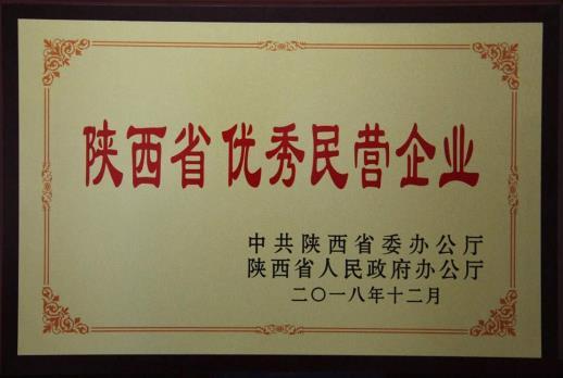 陕西省优秀民营企业