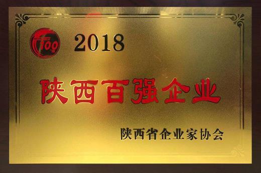 2018年陕西百强企业