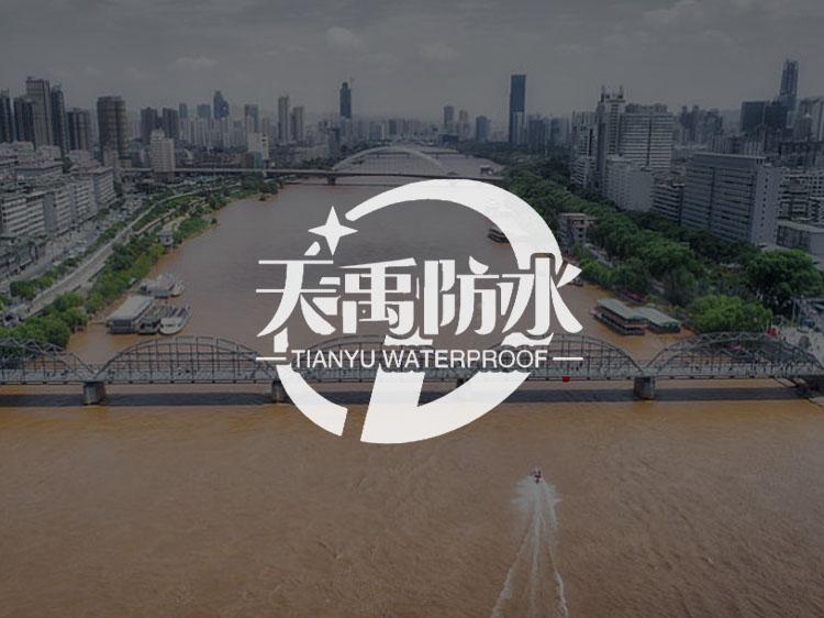 兰州传诚网络公司案例-天禹防水