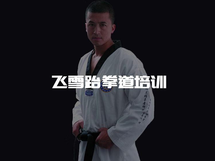 兰州传诚网络公司案例-飞雪跆拳道