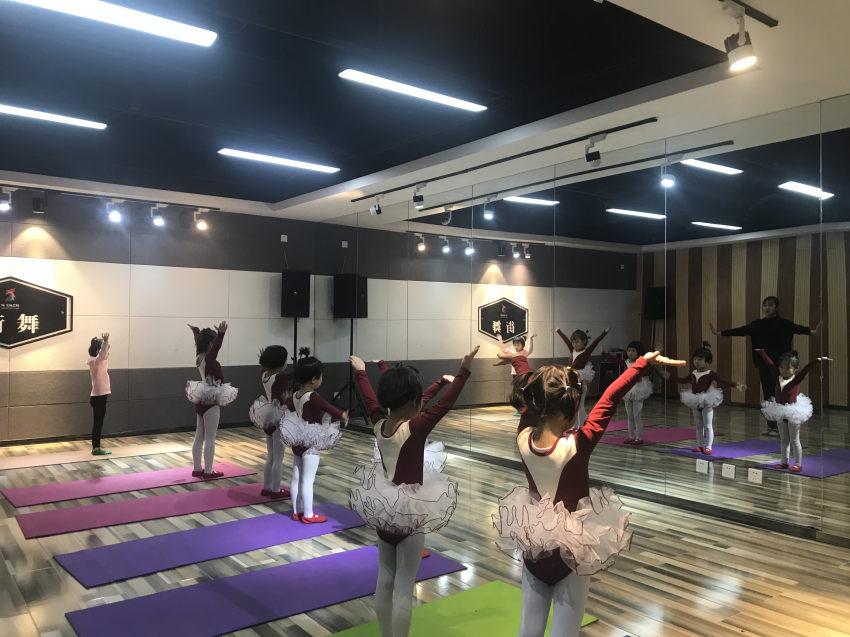 少儿拉丁舞(5.5-12岁)