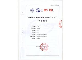 LED点光源(XSD-P40X2)检验报告