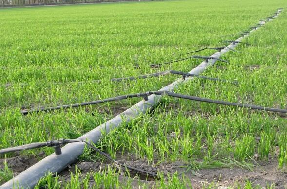 保证滴灌带正常使用