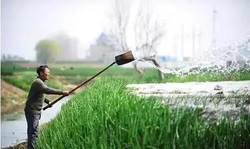 春季节水灌溉