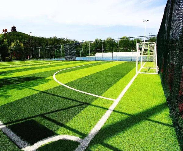 足球设施系列
