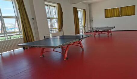 体育设施中的乒乓球台作为体育设施如何来施工安装