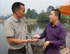 四川虾养殖客户