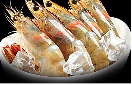 湖南虾养殖厂家