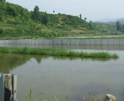 四川虾养殖