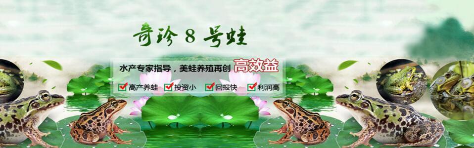 四川水蛭养殖