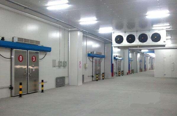 海鲜冷冻冷库的特点及冷库工程设计关键是什么
