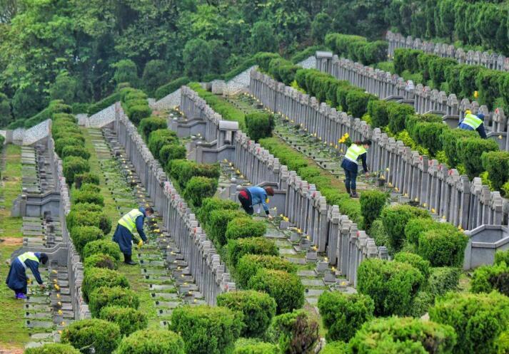 殡葬墓地设计中的墓园安葬区更适宜采用哪种布局方式