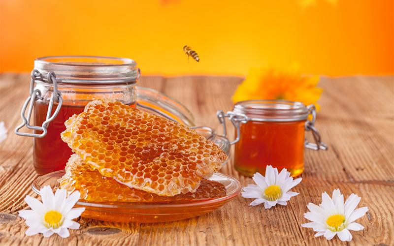 大连蜂产品