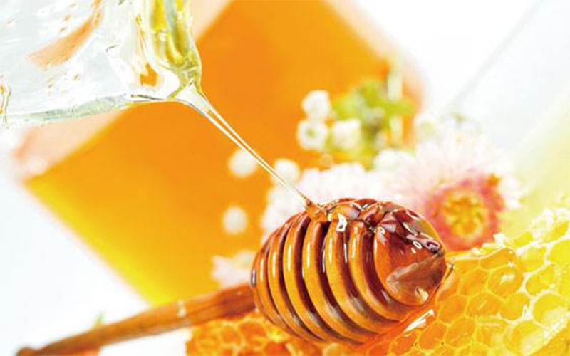 蜂蜜的土蜂窝都有什么作用和功效