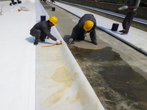 遂宁防水工程团队风采