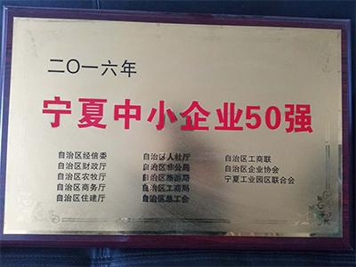 宁夏中小企业50强
