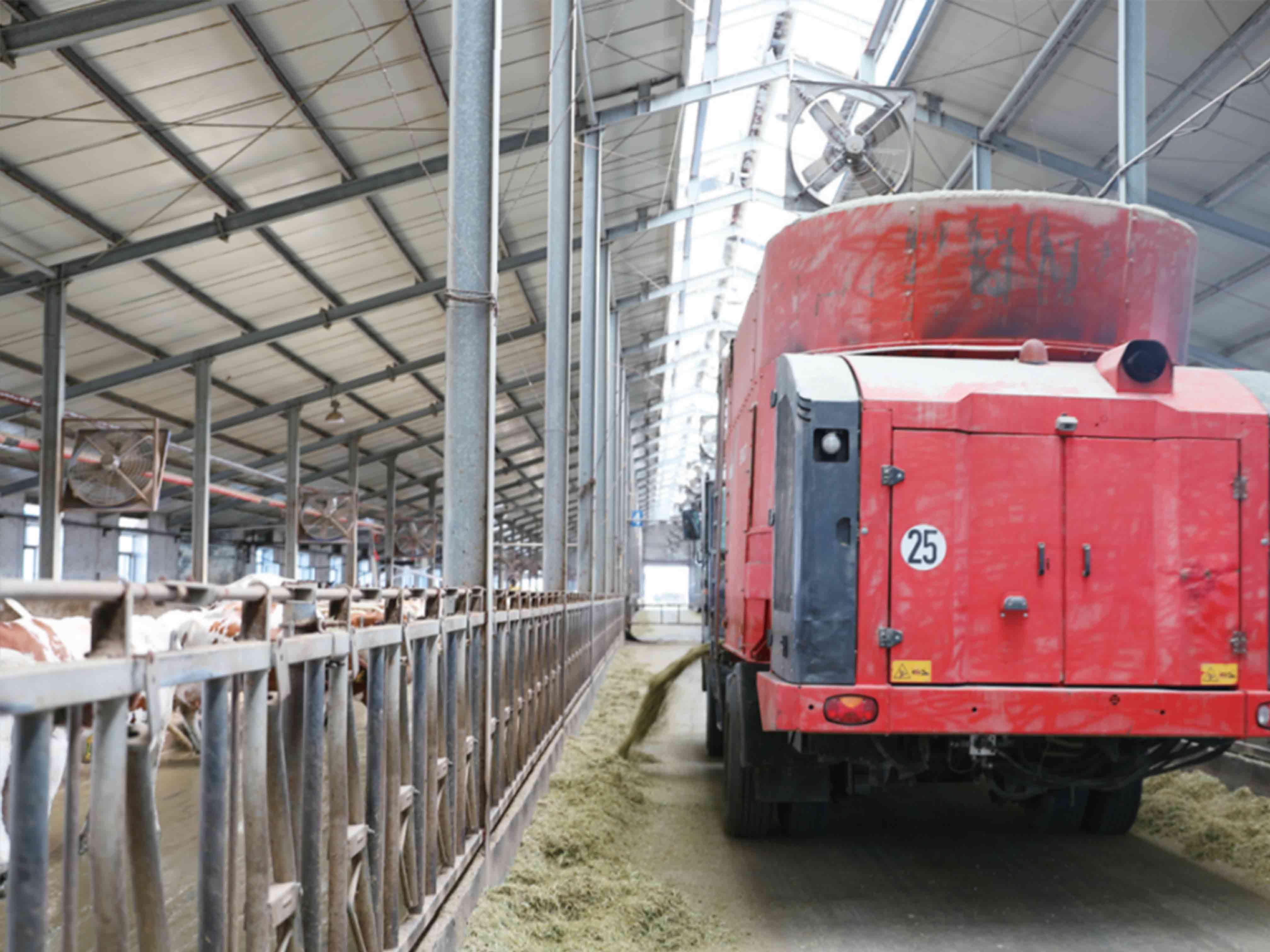 看看呼伦贝尔的现代化奶牛养殖~