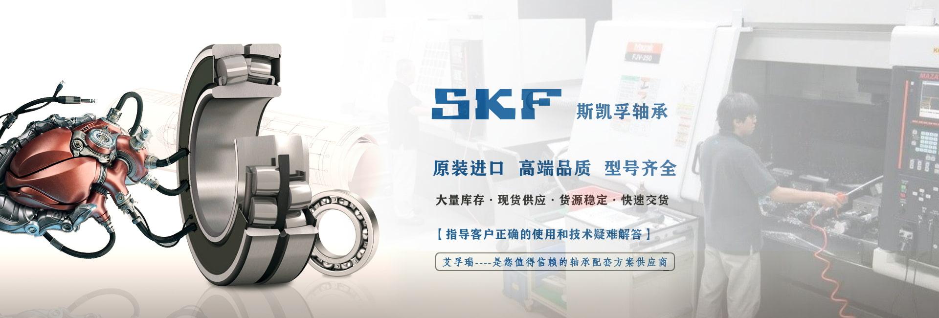 成都SKF轴承