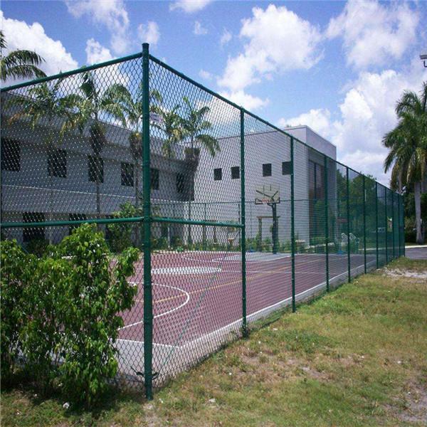 河南网球围网