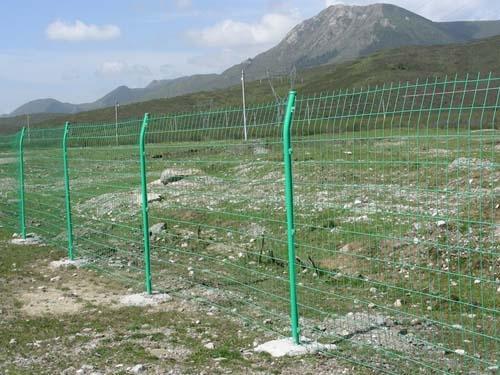 双边丝护栏网安装