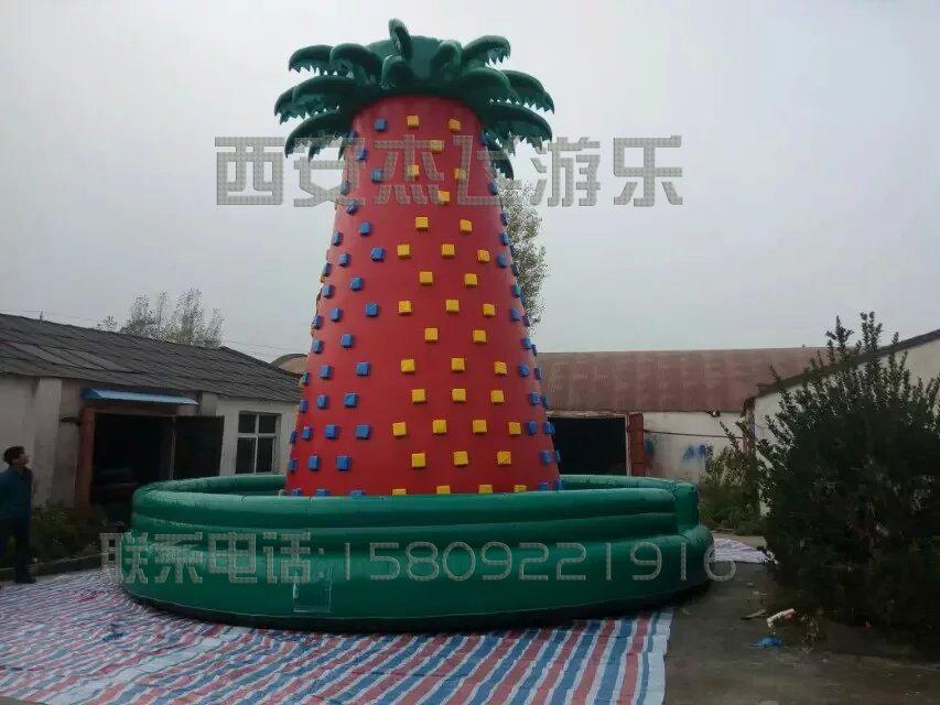 直径8米椰子树攀岩