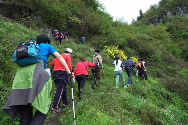 四川廢氣除塵公司的綠色行動主題爬山活動