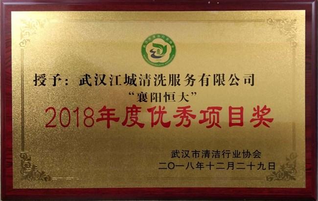 2018年度优秀项目奖证书