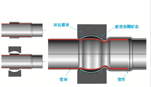 不锈钢环压管件