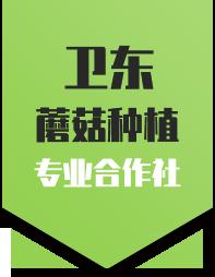 商水县卫东蘑菇种植农民专业合作社