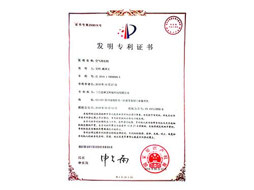 空气净化剂专项证书