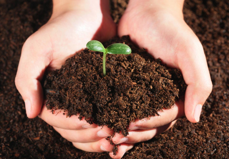 四川土壤修复剂帮土壤焕发新生