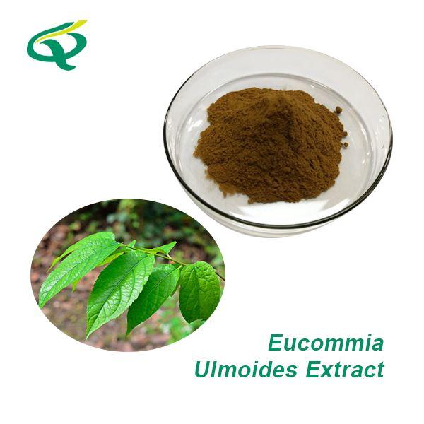 綠原酸的功效和作用
