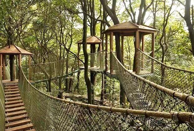 如泰课堂:成都丛林穿越设备给我们带来的影响