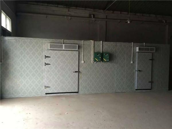 陕西冷库设备冷库螺杆机组不正常振动,你怕了吗?