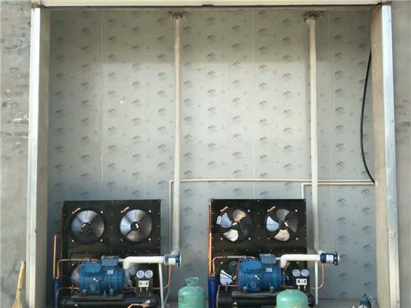 保鲜冷库和气调冷库的区别在哪?优势和价格?