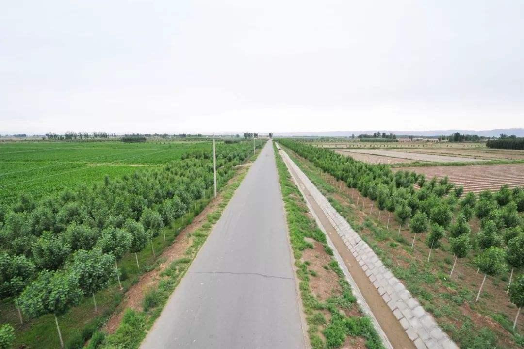 土地綜合整治的目的和主要政策