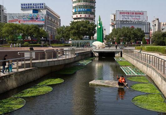 荊門河道治理及生態修復