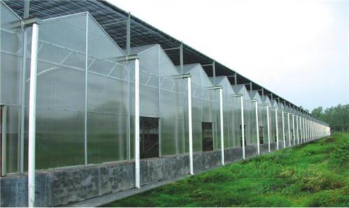 温室花卉工程