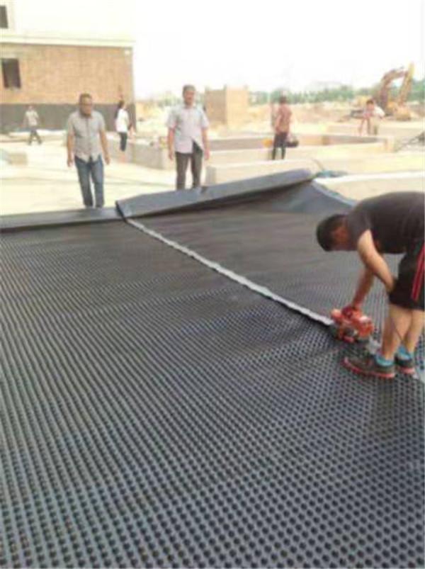 河南排水板厂家