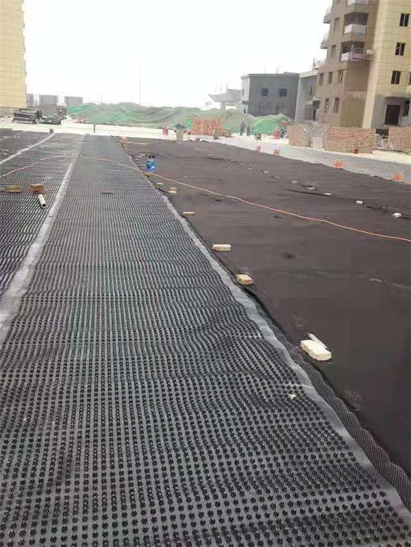 排水板厂家