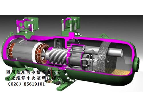 專業維修比澤爾壓縮機