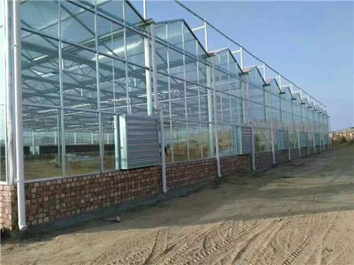 河南玻璃智能温室连栋大棚安装