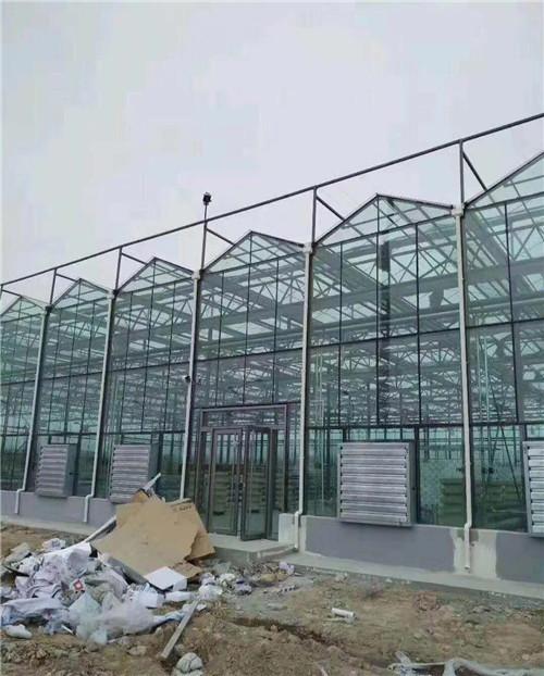 玻璃智能温室连栋大棚